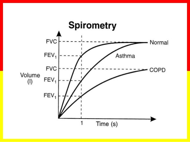the fev1 as the radius of the airway was decreased In respiratory physiology, lung compliance describes the willingness of the lungs to distend, and elastance the willingness to return to the resting position.