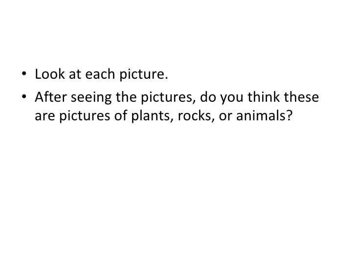 Look at each picture.<br />After seeing the pictures, do you think these are pictures of plants, rocks, or animals?<br />