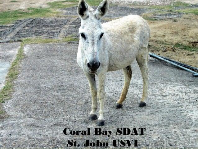 1Coral Bay SDATSt. John USVI