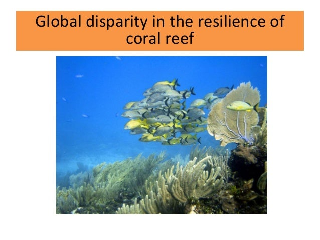Global disparity in the resilience of coral reef