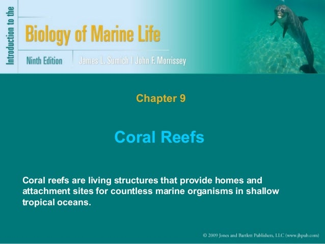 Chapter 9  Coral Reefs Coral reefs are living structures that provide homes and attachment sites for countless marine orga...