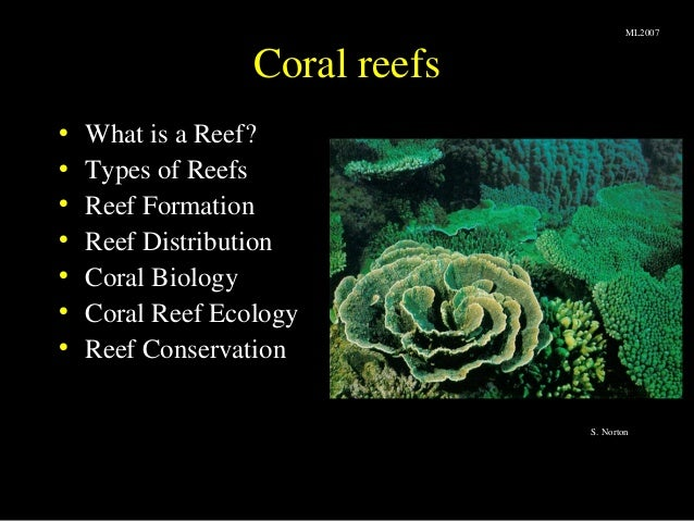Coral reefs• What is a Reef?• Types of Reefs• Reef Formation• Reef Distribution• Coral Biology• Coral Reef Ecology• Reef C...