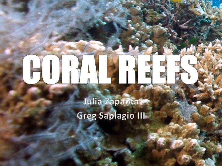 "CORAL REEFS  Often called ""rainforests of the sea"", they are one of the most diverse ecosystems on Earth. They occupy less..."