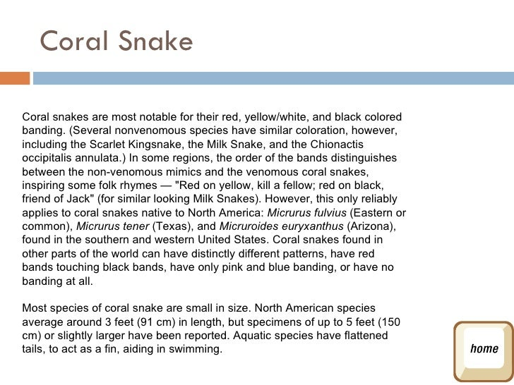 Snake Rhyme For Coral Snake Coral Snake Coral Snakes Are