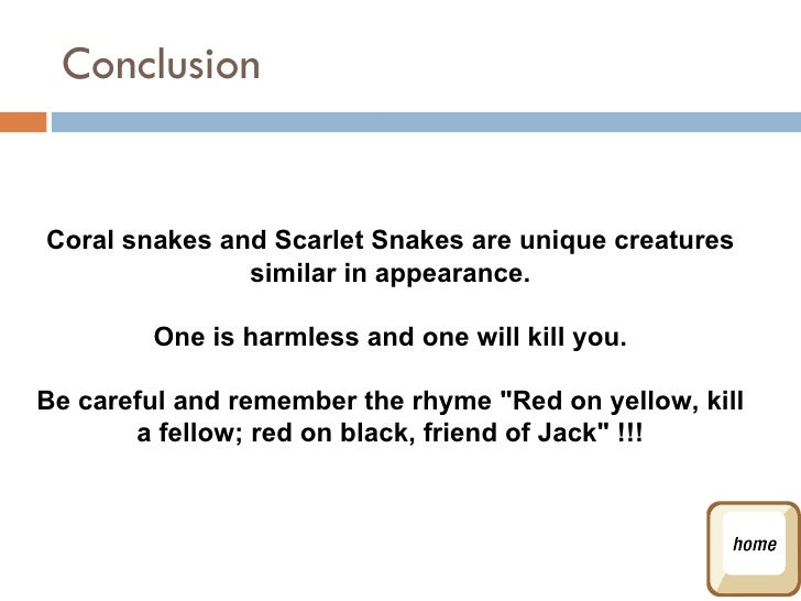 Snake Rhyme For Coral Snake Conclusion Coral Snakes And