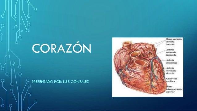 CORAZÓN PRESENTADO POR: LUIS GONZALEZ