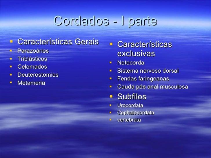 Cordados - I parte <ul><li>Características Gerais </li></ul><ul><li>Parazoários </li></ul><ul><li>Triblásticos </li></ul><...