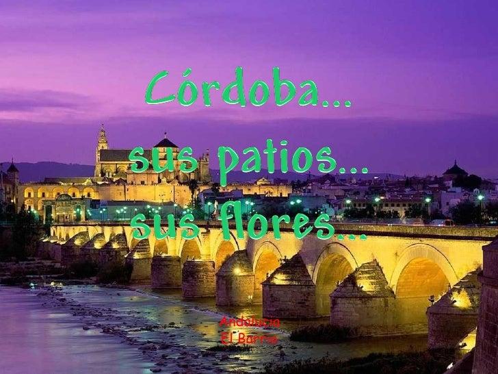 Andalucia El Barrio