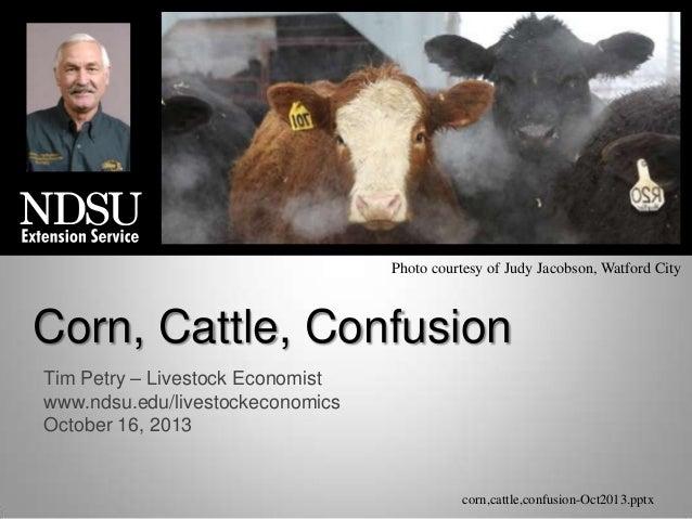 Photo courtesy of Judy Jacobson, Watford City  Corn, Cattle, Confusion Tim Petry – Livestock Economist www.ndsu.edu/livest...