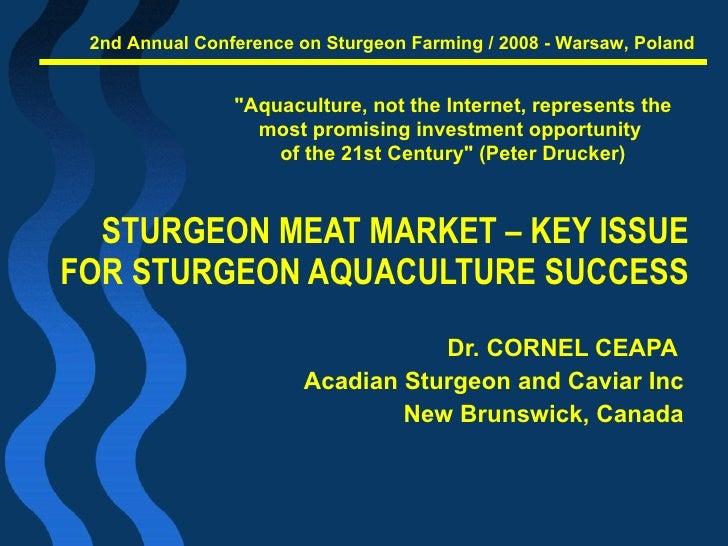 Cornel Ceapa   Sturgeon Meat Market   Warsaw 2008