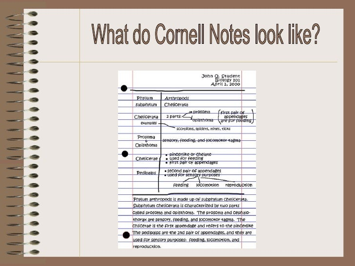 Cornell notes full size template