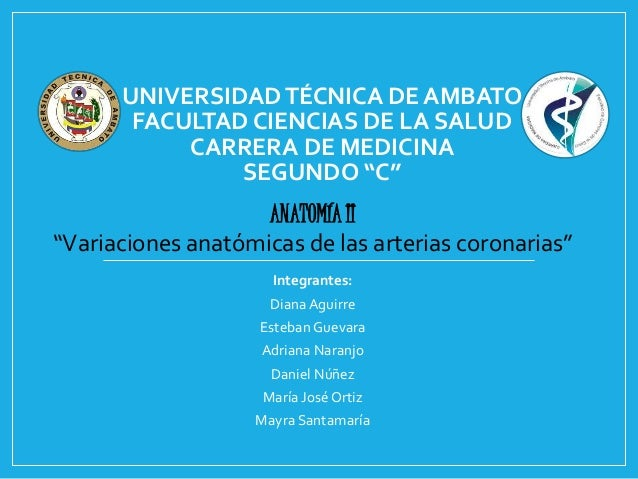 """UNIVERSIDAD TÉCNICA DE AMBATO  FACULTAD CIENCIAS DE LA SALUD  CARRERA DE MEDICINA  SEGUNDO """"C""""  ANATOMÍA II  """"Variaciones ..."""