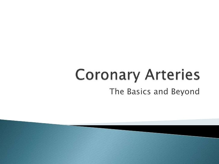 Coronary Arteries<br />The Basics and Beyond<br />