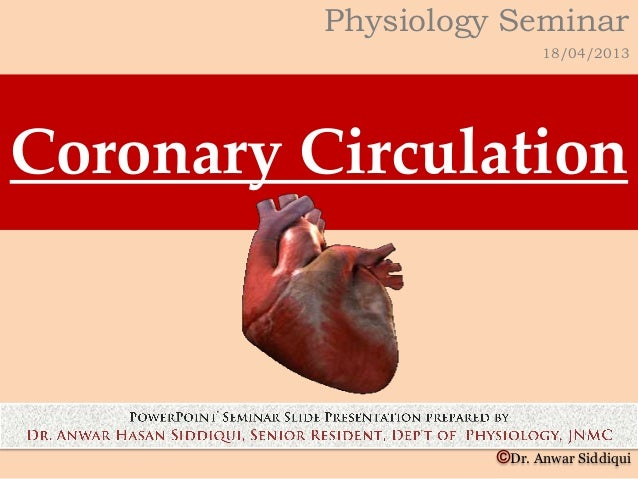 coronary circulation The two main coronary arteries (right and left) (fig 1) begin at the root of the aorta  (the aortic cusp) in most people the right coronary artery (rca) serves the.