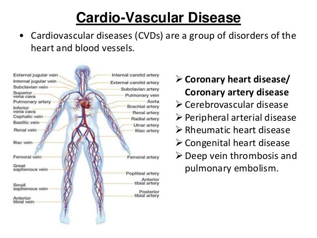 cardiac and peripheral vascular assessment Physical examination for peripheral vascular system peripheral vascular system assessment mohamed fouad.