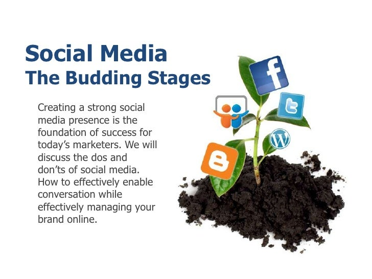 Social MediaThe Budding Stages<br />Creating a strong social media presence is the foundation of success for today's marke...