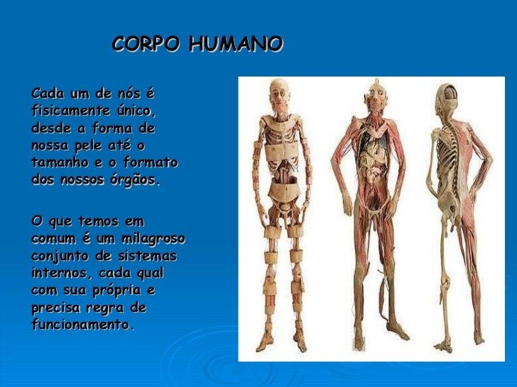 CORPO HUMANO Cada um de nós é  fisicamente único, desde a forma de nossa pele até o tamanho e o formato  dos nossos órgãos...