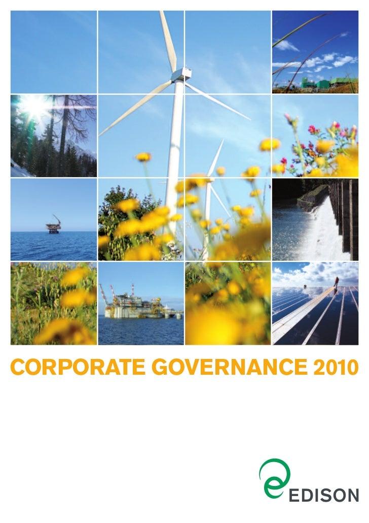 CORPORATE GOVERNANCE 2010