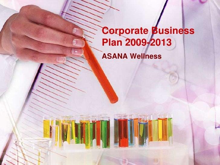 Corporate Business Plan 2009 2013