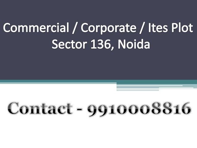 Corporate plot sec 136 noida 9910008816