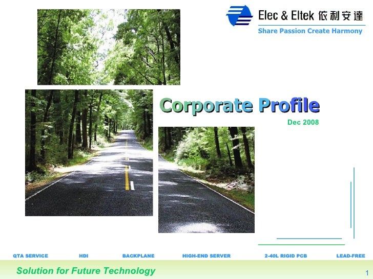 Elec and Eltek Corporate Profile 2008 Dec English