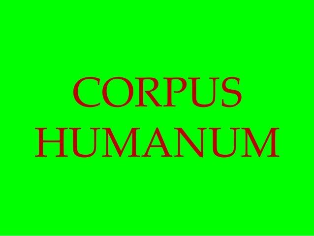 Corpus humanum