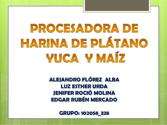 PROCESADORA DE HARINA DE PLÁTANO  YUCA  Y MAÍZ