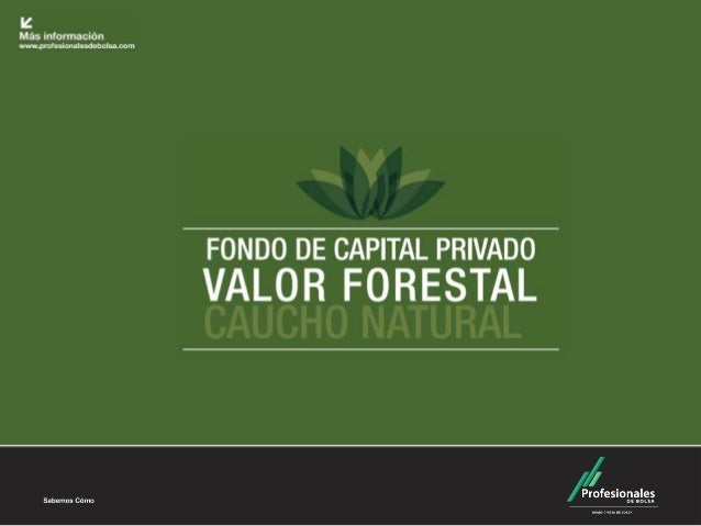 Fondo de Capital Privado – Valor Forestal