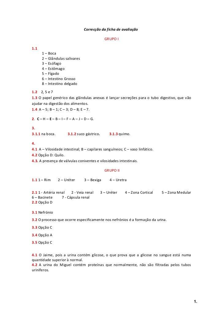 Correcção sistema digestivo e excretor 9.ºano