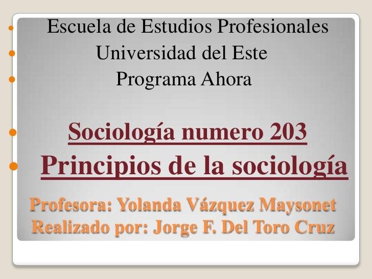 Escuela de Estudios Profesionales<br />               Universidad del Este<br />                   Programa Ahora <br />So...