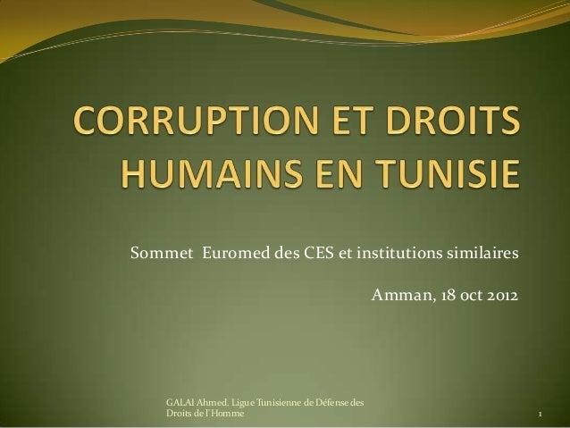 Sommet Euromed des CES et institutions similaires Amman, 18 oct 2012 GALAI Ahmed. Ligue Tunisienne de Défense des Droits d...