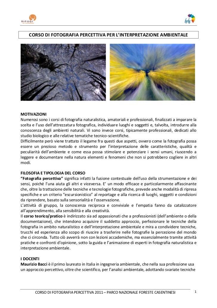 Corso di fotografia percettiva nel parco nazionale foreste casentinesi