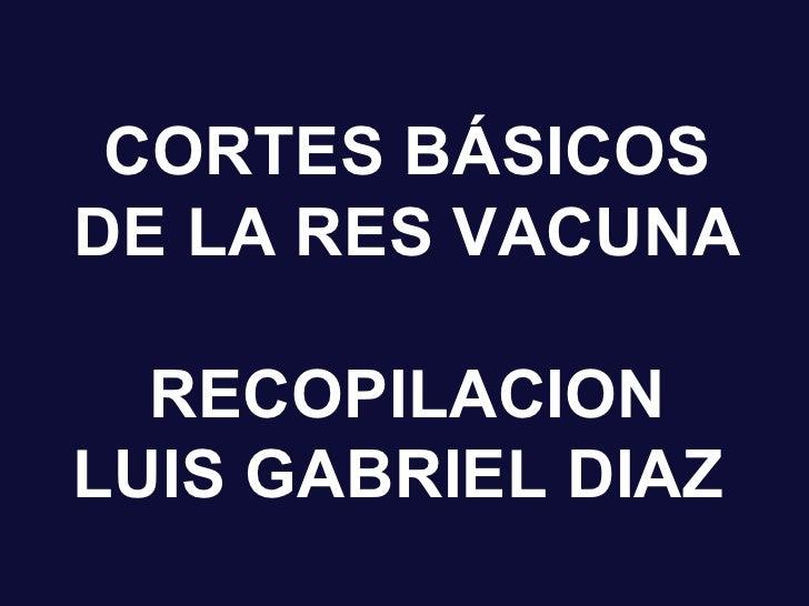 Cortes Basicos De La Res Vacuna