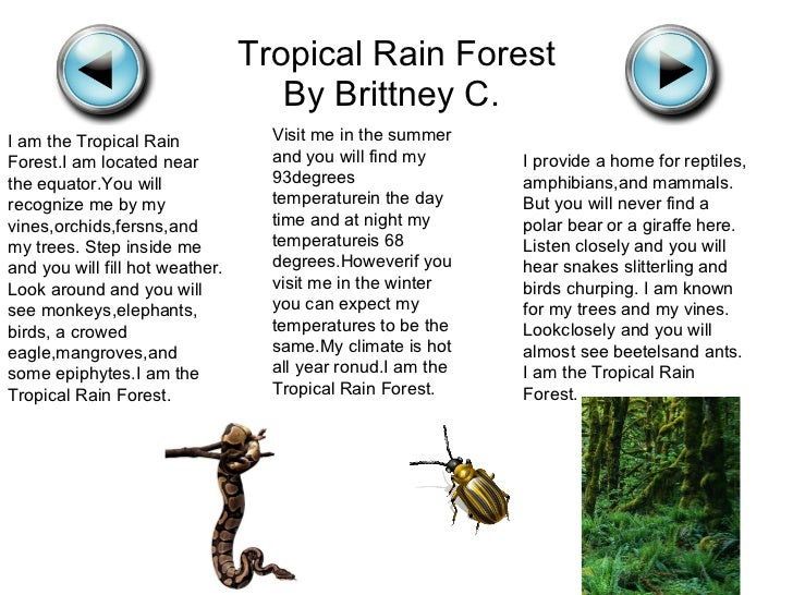 "Biome ""I"" Poems By Mrs. Corum's 5th Grade Class"