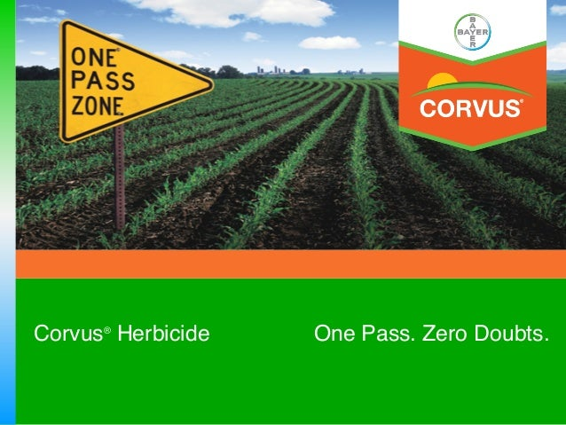 Corvus® Herbicide   One Pass. Zero Doubts.!