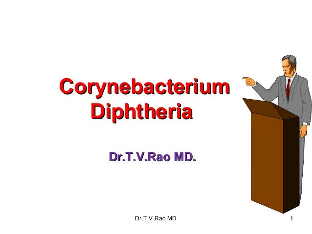 Corynebacterium  Diphtheria    Dr.T.V.Rao MD.        Dr.T.V.Rao MD   1