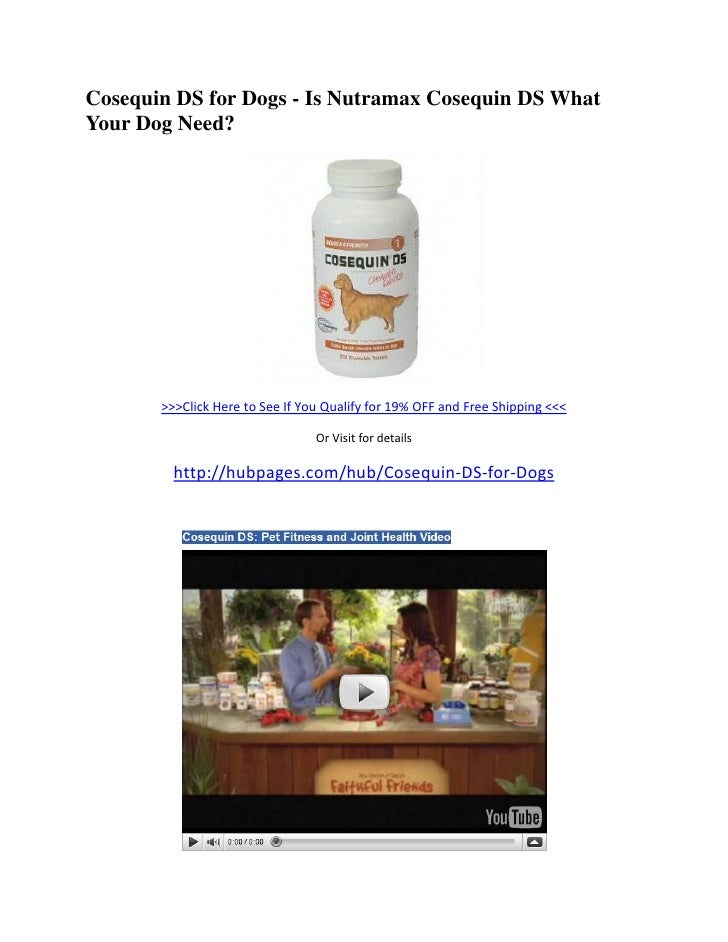 Cosequin DS for Dogs - Is Nutramax Cosequin DS What Your Dog Need?