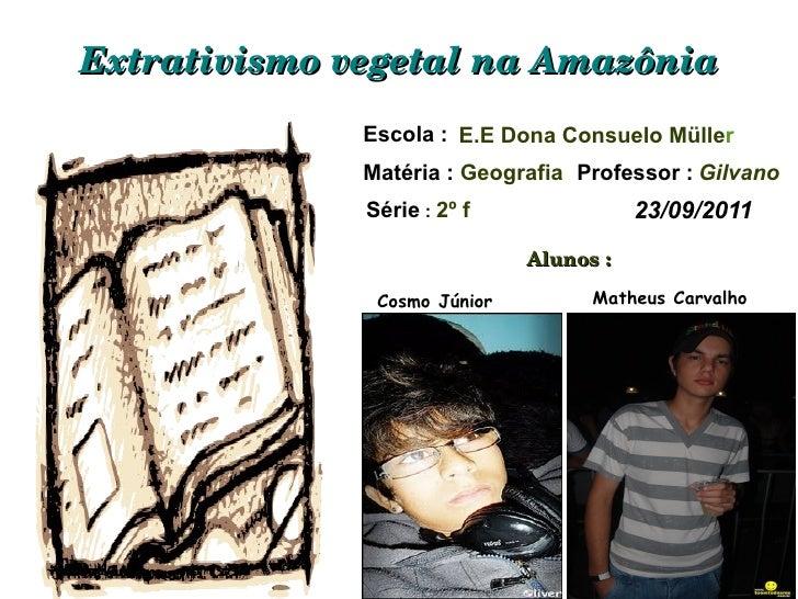 Extrativismo vegetal na Amazônia Escola :  E.E Dona Consuelo Mülle r  Matéria :   Geografia Professor :   Gilvano Série  :...