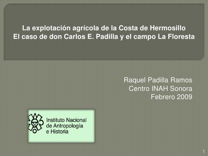 La explotación agrícola de la Costa de HermosilloEl caso de don Carlos E. Padilla y el campo La Floresta<br />Raquel Padi...