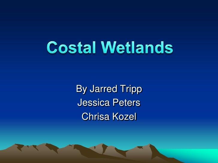 Miss Campolongo's Period 6: Coastal Wetlands