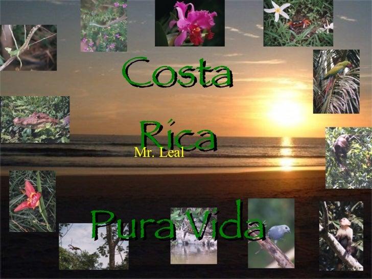 Costa Rica Pura Vida Mr. Leal