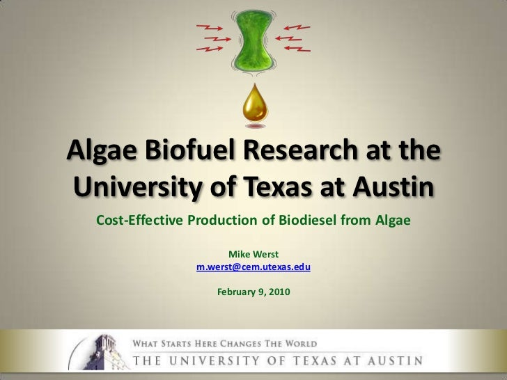 Cost Effective Production of Algae Oil - Mike Werst - Feb 2010