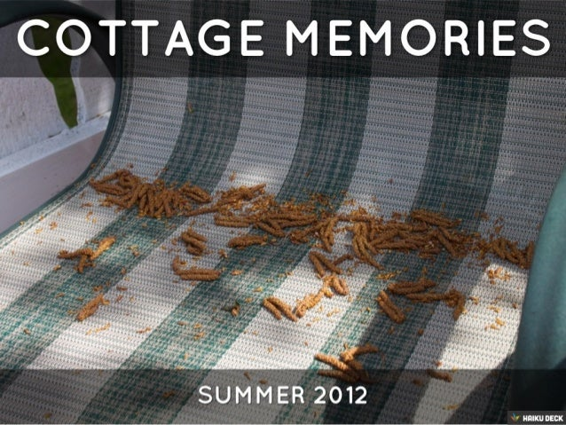 COTTAGE MEMORIES