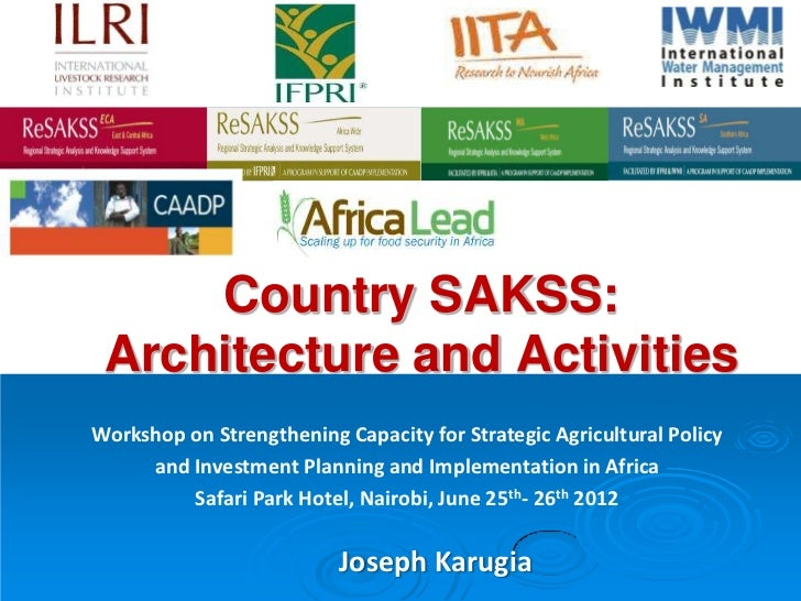 Country SAKSS: Architecture and ActivitiesWorkshop on Strengthening Capacity for Strategic Agricultural Policy     and Inv...
