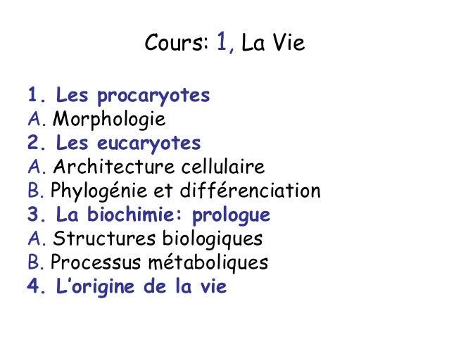 Cours: 1, La Vie1. Les procaryotesA. Morphologie2. Les eucaryotesA. Architecture cellulaireB. Phylogénie et différenciatio...