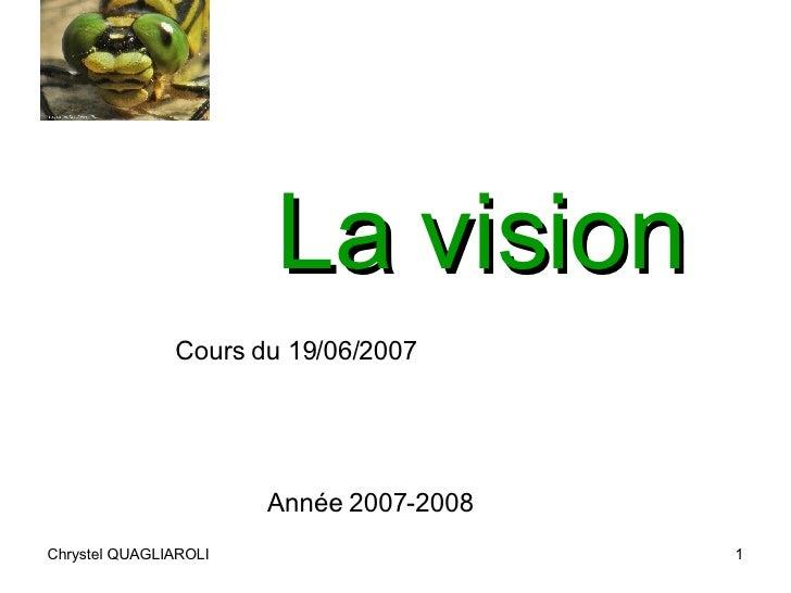 La vision Cours du 19/06/2007 Année 2007-2008