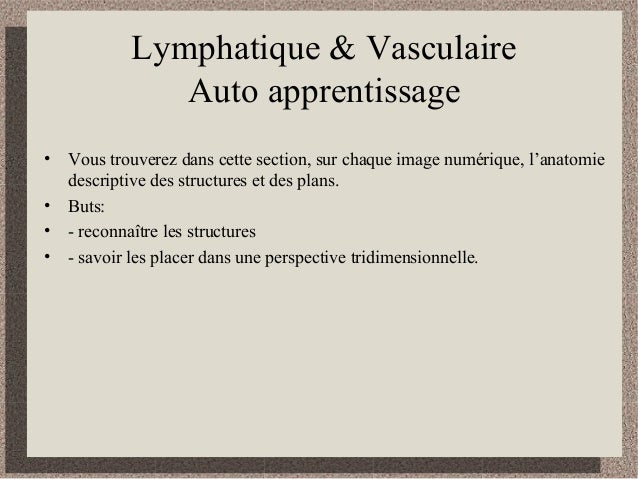 Lymphatique & Vasculaire Auto apprentissage • Vous trouverez dans cette section, sur chaque image numérique, l'anatomie de...