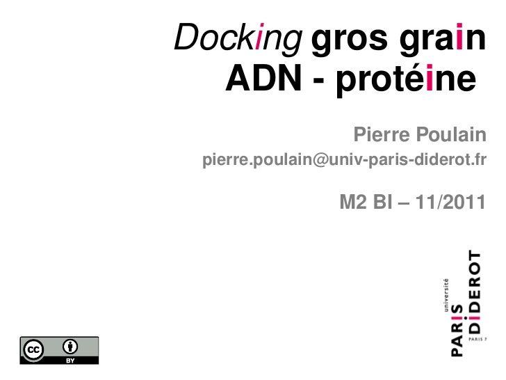 Docking gros grain  ADN - protéine                    Pierre Poulain pierre.poulain@univ-paris-diderot.fr                 ...