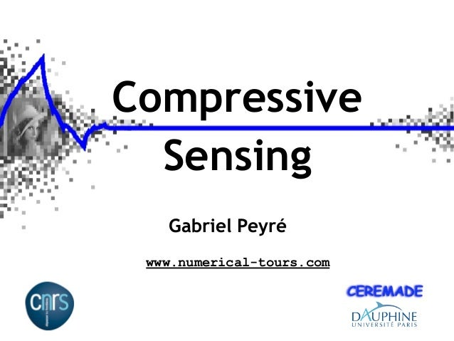 Signal Processing Course : Compressed Sensing