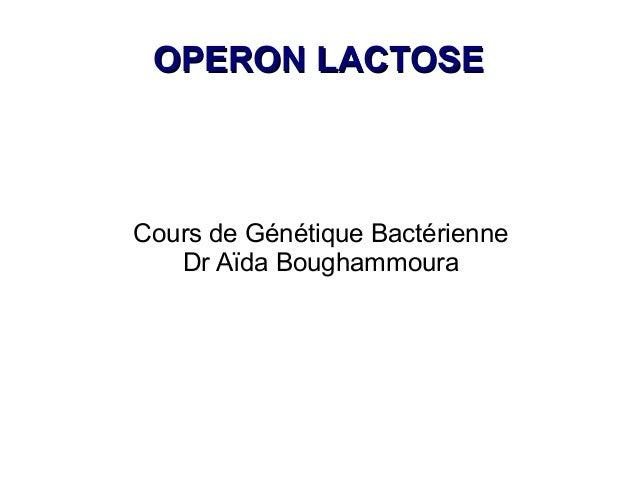 OPERON LACTOSECours de Génétique Bactérienne   Dr Aïda Boughammoura